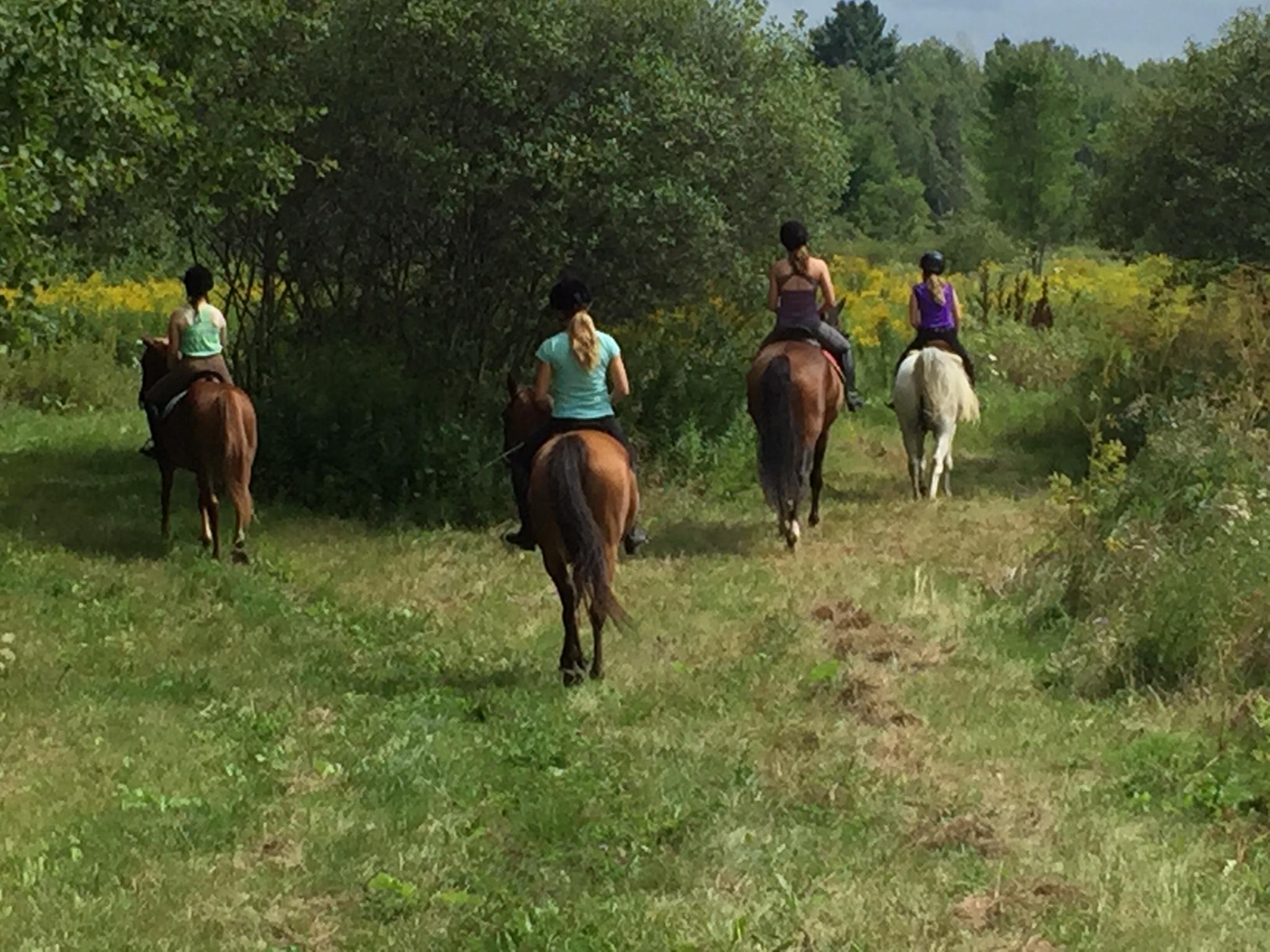 Trail Camp